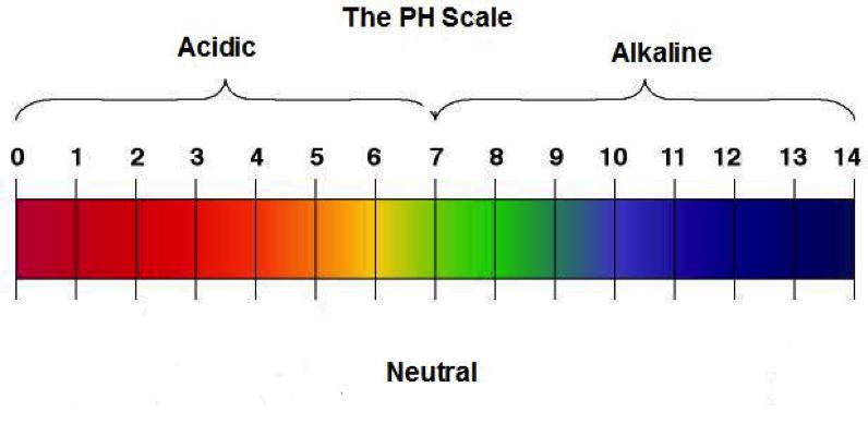 Alkaline Water Negatives